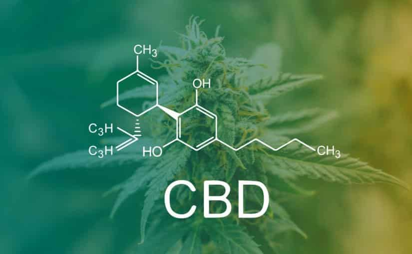 Information on CBD in the Workplace